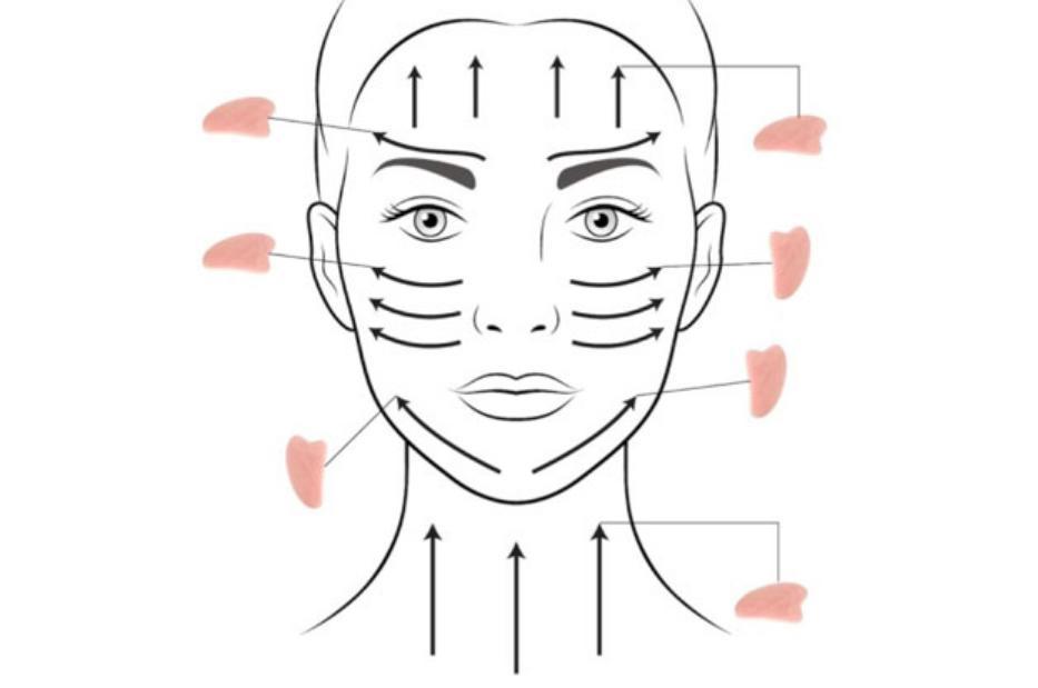 массаж гуаша техника выполнения -массажные линии